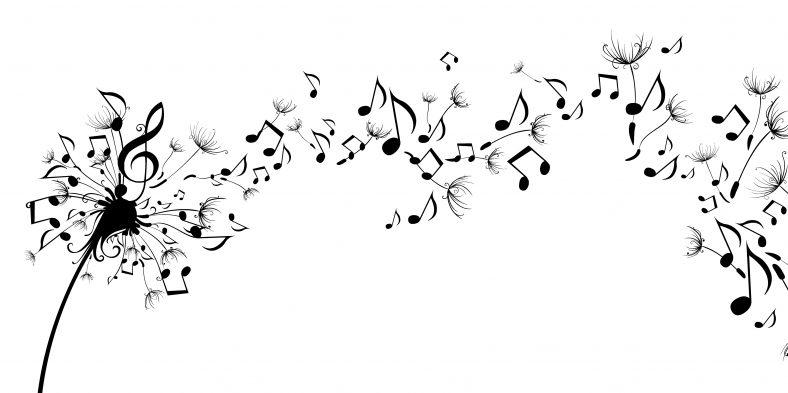 Despre cele mai stranii instrumente muzicale