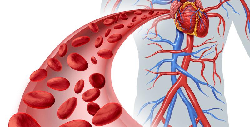 Care sunt cele mai comune probleme ale inimii?